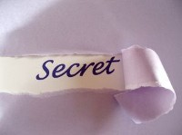 The Secret of SHE
